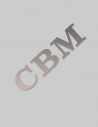 CBM v. 21 - A Vision for Equality
